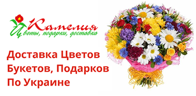 02d1851506de Интернет - магазин «Камелия». Контактная информация, обратная связь ...