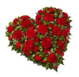 Заказ цветов с доставкой в харьков на день святого валентина купить розы ботанический сад